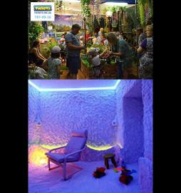 Соляная пещера + Сад живых тропических бабочек